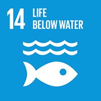 14.LIFE BELOW WATER