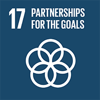 17.PARTNERSHIPS FOR THE GOALS
