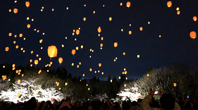 Lanterns floating in the night Sky